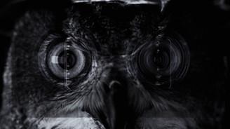 iPhone 7'den sanatsal video