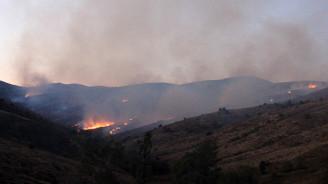 Sivas'ta orman yangını: 200 hektar kül oldu