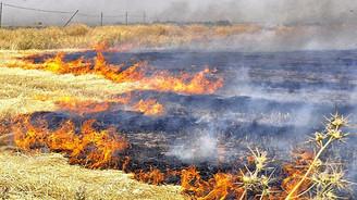 Anız yangınları toprağın verimliliğini azaltıyor