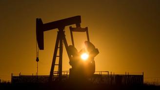 Petrolcülerin gözü Cezayir'de olacak