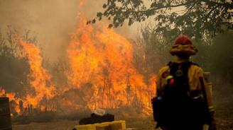 California'daki yangın 3 gündür söndürülemiyor