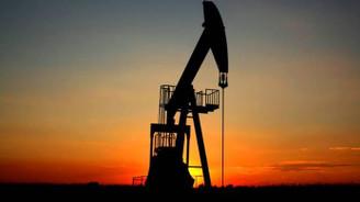 Goldman Sachs'tan OPEC raporu