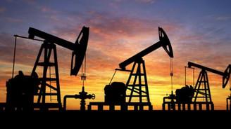 Petrolde dalgalanma devam ediyor