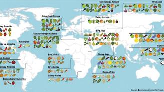İşte gıdada küresel menşe haritası
