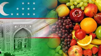 Özbekistanlı firma meyve ithal edecek