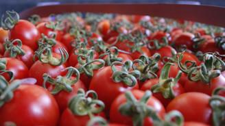 Rus ambargosu Antalya'yı tarımda da vurdu