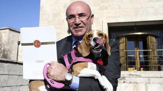 Tanal köpeğiyle basın toplantısı düzenledi