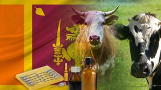 Sri Lanka'dan veteriner ilaçları bayiliği talebi