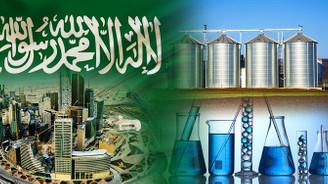S. Arabistan firması silo ve kimyasal hammadde satın almak istiyor