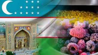 Özbekistanlı müşteri IQF hat kurulum dahil teklif istiyor