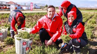 Vodafone 'Akıllı Köy'le 5 yılda 15 milyar TL hedefliyor