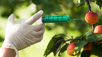 TÜBA 'gıda güvenliği'ne dikkati çekecek