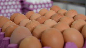 Yumurta üretimi eylülde azaldı