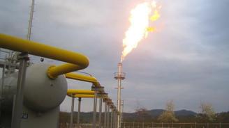 Sistemde kalacak doğalgaz sanayiciyi yeniden yatırıma yöneltecek