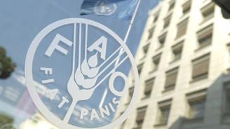 Küresel gıda fiyatları ekimde geriledi