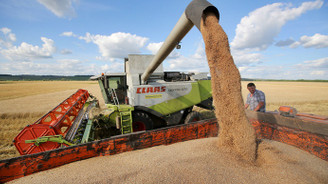 TMO, 230 bin ton buğday aldı