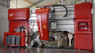 Otomasyonlu süt sağımında Avrupa'nın 20 yıl gerisindeyiz