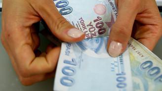 Küçük aile işletmelerine 1.3 milyar lira destek