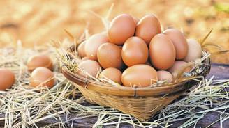 Kaytaş, Yeşilhisar'daki yeni çiftlik yatırımıyla pazar payını artıracak