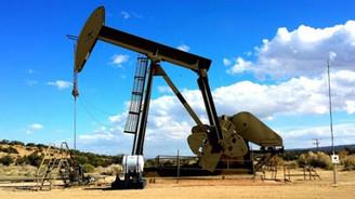 TPAO'dan 4 yeni petrol arama ruhsatı talebi