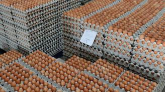 Yumurta ihracatında hedef İran pazarı