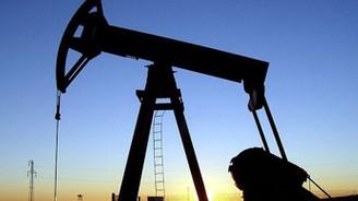 Petrol ithalatı ekimde arttı
