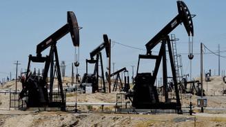 TPAO'dan 5 petrol arama ruhsatı talebi