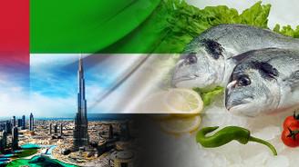 Birleşik Arap Emirlikleri firması çipura satın alacak