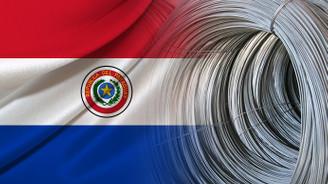 Paraguaylı firma galvanizli tel ithal etmek istiyor