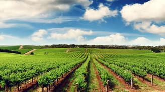 Tarım arazileri kullanımına düzenleme