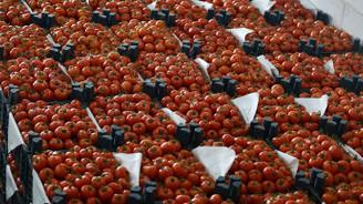 Yaş meyve ve sebze ihracatı arttı