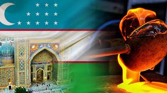 Özbekistan'da bakır dökümhanesi kurulumu için teklif isteniyor