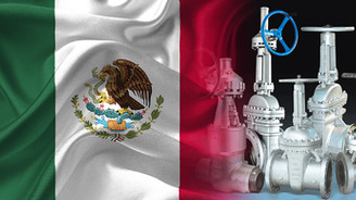 Meksikalı firma paslanmaz çelik vana ithal edecek