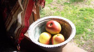 Piraziz elması tescillendi