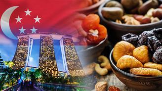 Singapurlu firma doğal kuru meyve çeşitleri talep ediyor