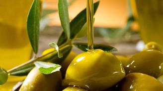 Zeytin ve zeytinyağı ihracatı yüzde 231 arttı
