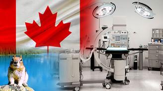 Kanadalı firma medikal hava analiz cihazı satın alacak