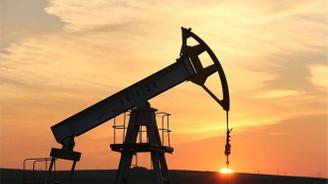 Petrol, ABD verisiyle sert düştü
