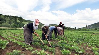 Terör mağduru çiftçiye müjde