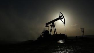 3 saha petrol için kamulaştırılacak