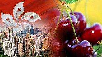 Hong Konglu firma kiraz ithal edecek