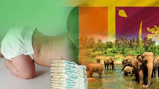 Sri Lankalı toptancı bebek ve yetişkin bezleri ithal edecek