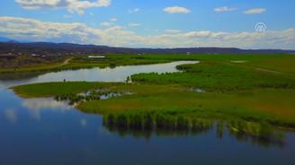 Ağrı Dağı Milli Parkı misafirlerini büyülüyor