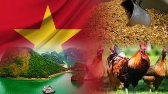 Vietnam pazarı için hayvan yemleri bayiliği talep ediliyor