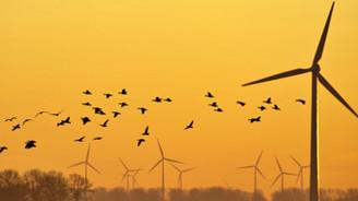 Rüzgar santrallerine 'kuş' düzenlemesi