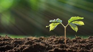 Sürdürülebilir gıda için sürdürülebilir toprak
