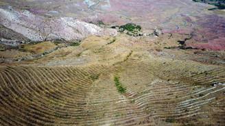 Erozyon önlemi çiftçiye 'ekmek' olacak