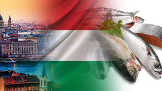 Macar firma balık çeşitleri ithal etmek istiyor