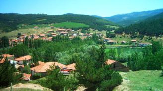 250 örnek köy gelecek yıl 'tamam'