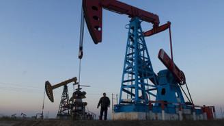 Kazakistan 87 milyon ton petrol üretecek